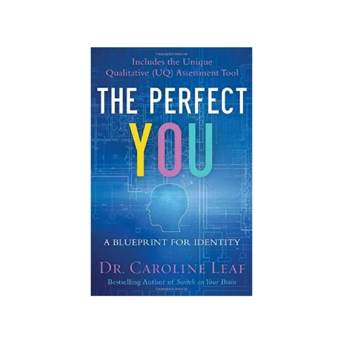 The Perfect You: A Blueprint for Identity by Dr. Caroline Leaf