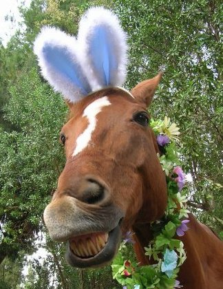 Easter Its Not Just For Bunnies Anymore Shel Harrington