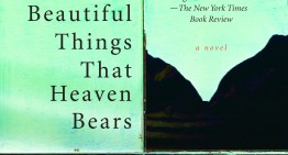Book Review: 'The Beautiful Things That Heaven Bears' by Dinaw Mengestu