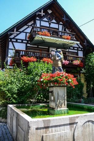 Bodensee-Nachklapp (1 von 1)-11