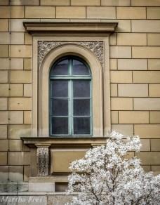 kabinettgarten (1 von 1)-8