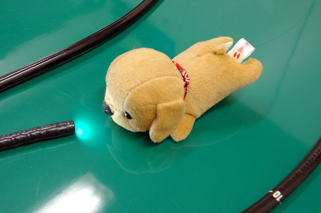 シェル動物病院受付