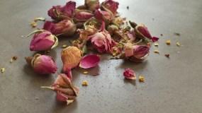 Siberian-Tea-Roses