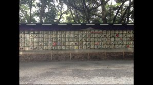 Old sake barrels in commemoration of families and business that have contributed to Meiji Shrine. Photo Credit: Connor MacHugh