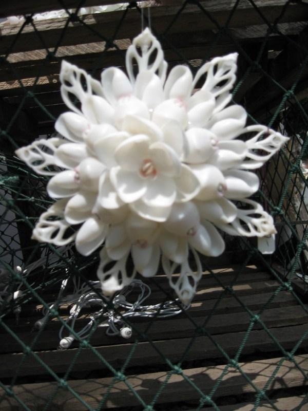 Shell Design Seashell And Mosaic Art