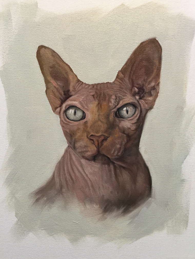 "How To Paint A Sphynx cat in oil – ""Harry"" by Shelley Hanna"