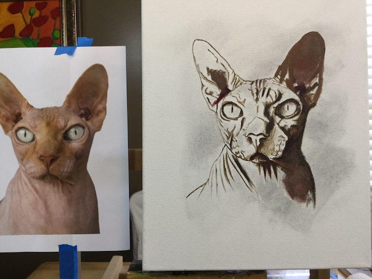 How To Paint A Hairless Sphynx Cat