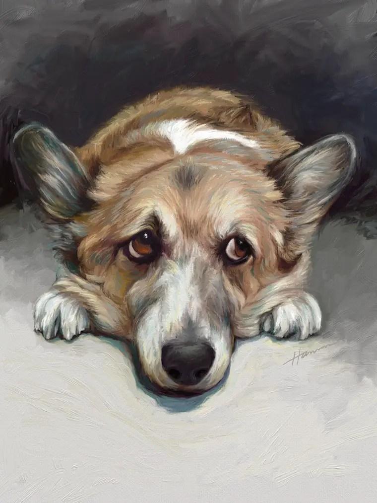 9 Helpful Dog Portrait Tips