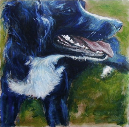 Painting black fur Eddie Acrylic on canvas Shelley Hanna acrylic springer spaniel