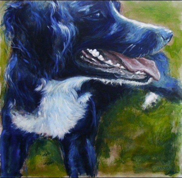 Painting black fur Eddie Acrylic on canvas Shelley Hanna