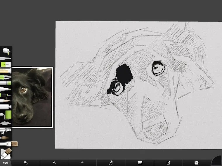 step 2 8 tips for painting black fur traditional and digital ArtRage step-by-step tutorial