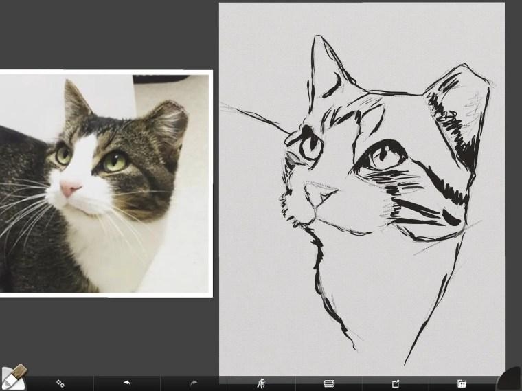 Cat digital painting tutorial step 1 drawing dark areas