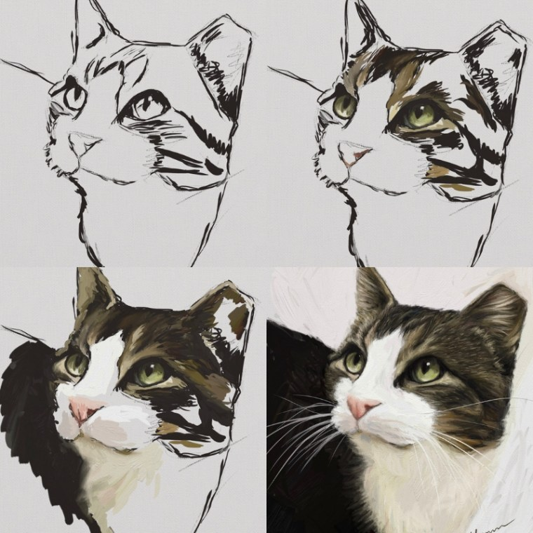 Tippy cat digital portrait progression