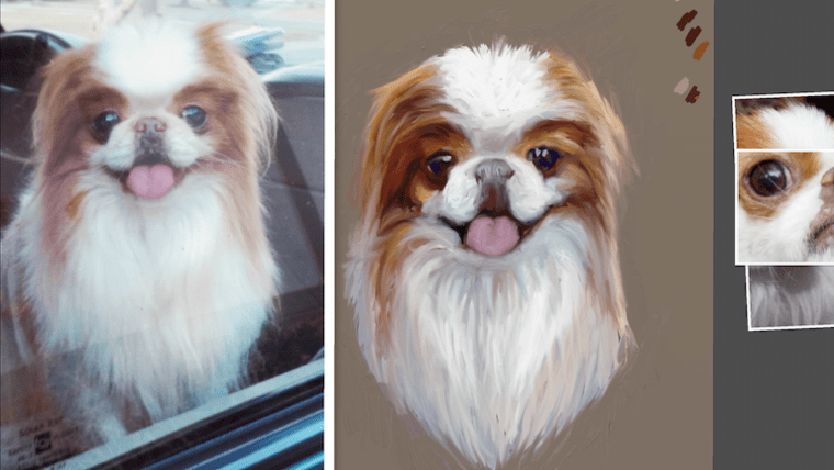 Step 7 japanese chin portrait