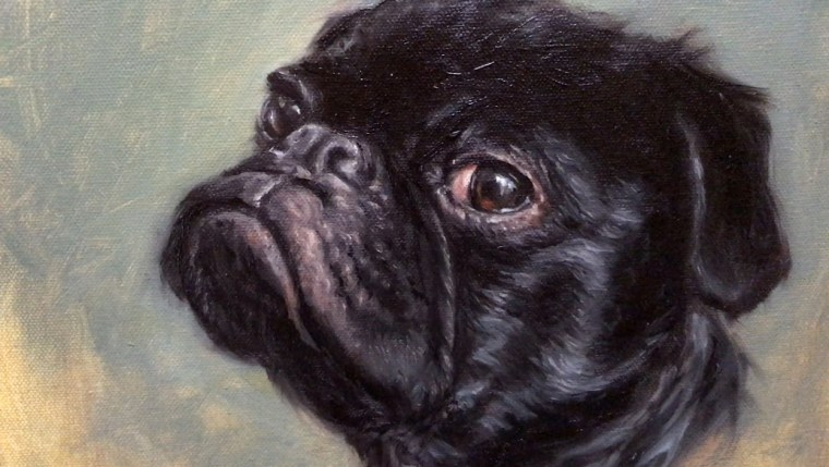 close up of dog portrait painting pet pug shelley hanna