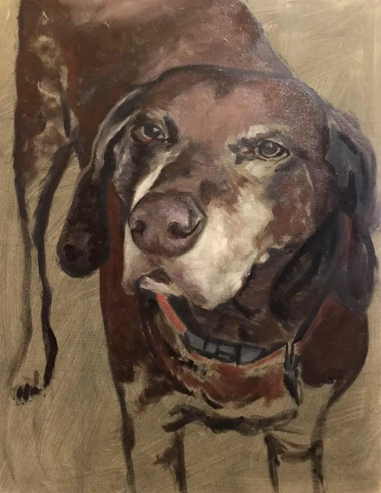Adding medium tones to senior dog portrait face