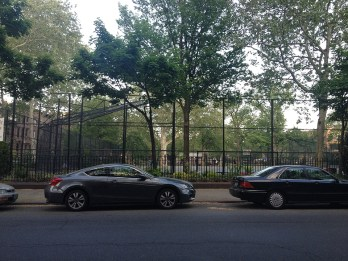Brooklyn Basketball Court with trees
