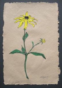 """Shelley's artwork, titled """"Black Eyed Susan"""""""