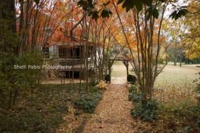 The William Harris Homestead (4)