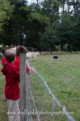 school field trip at whh-91