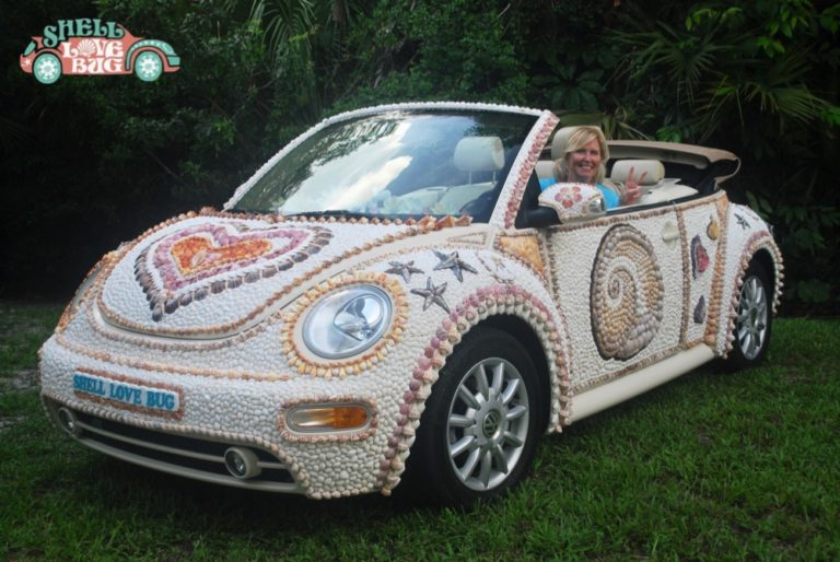 Shell Lovebug, Seashells, Seashore, Seashell Art
