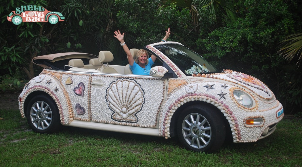 Shell Love Bug The Ultimate Symbol Of The Love Of