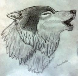 wolf drawing cool draw wolves deviantart kinda tag 2009