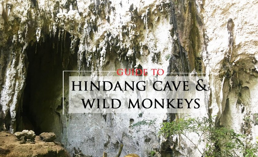Guide to Hindang Cave and Wild Monkeys in Hindang, Leyte