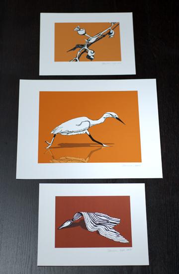 Orange Seabird and Sea Kelp
