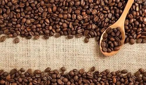 choosing-the-best-organic-coffee