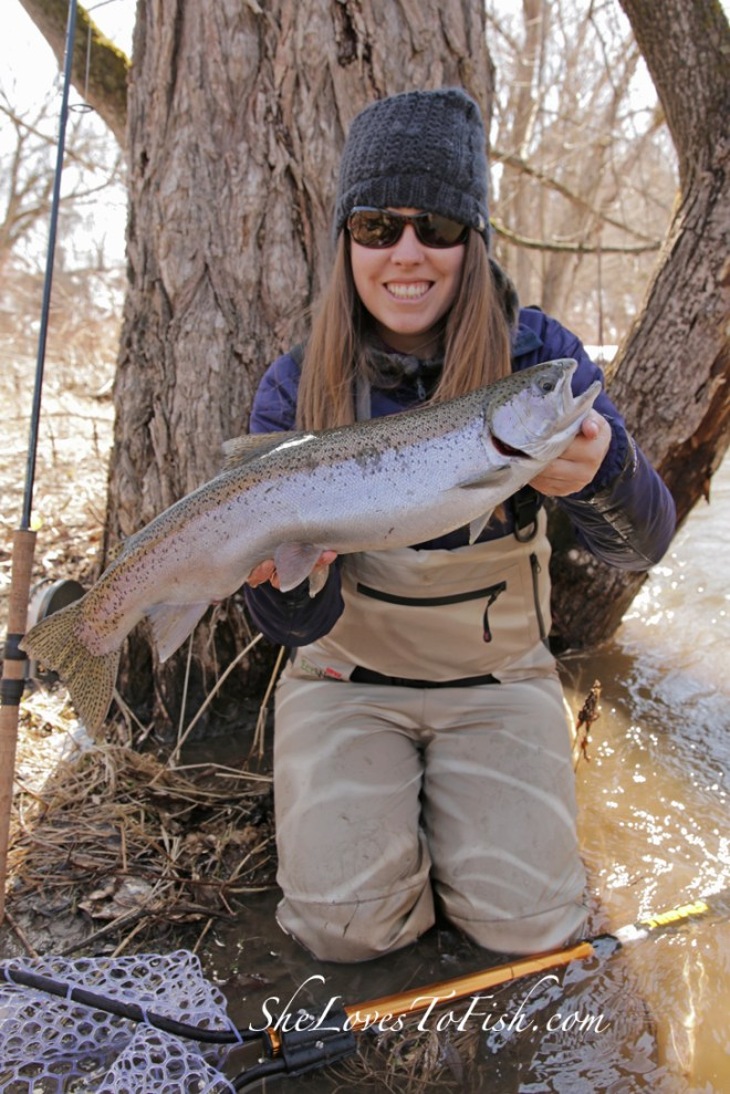 With high water and stained conditions, I was able to catch this fresh-from-the-lake chrome steelhead on my centrepin.
