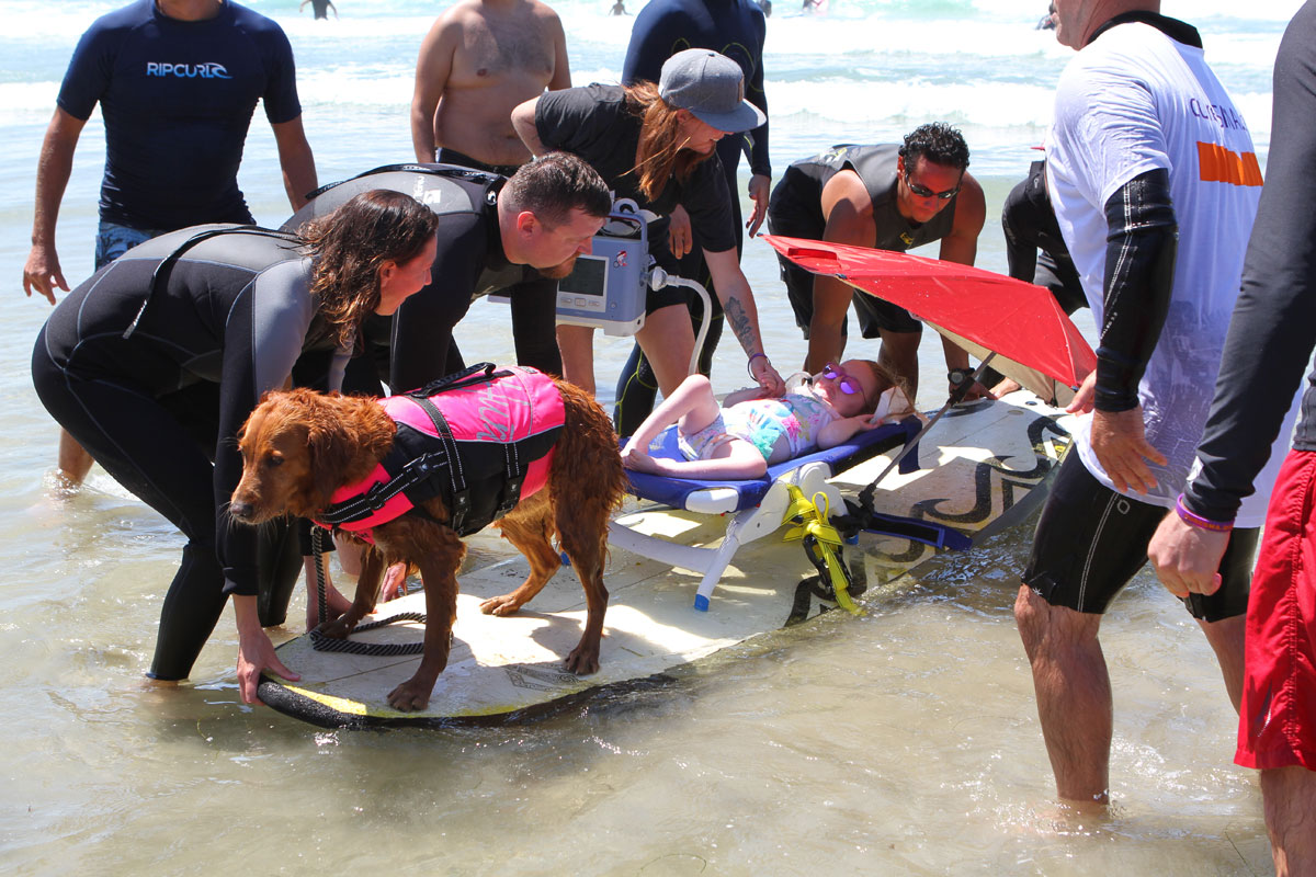 Surf Dog Gives Disabled Children An Unforgettable Day