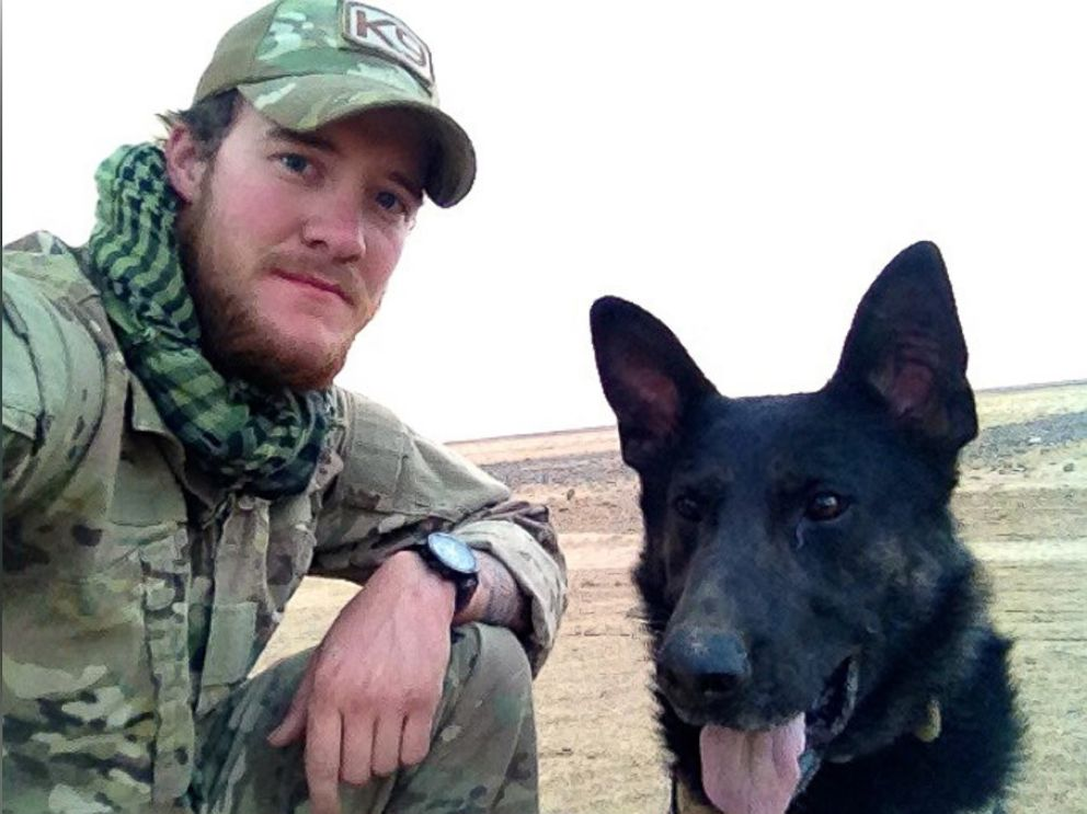Four U.S. Military Dogs Receive Top Honor for Their Service