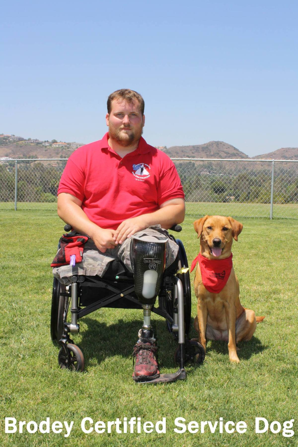 Shelter Dogs Helping to Improve the Lives of Our Veterans