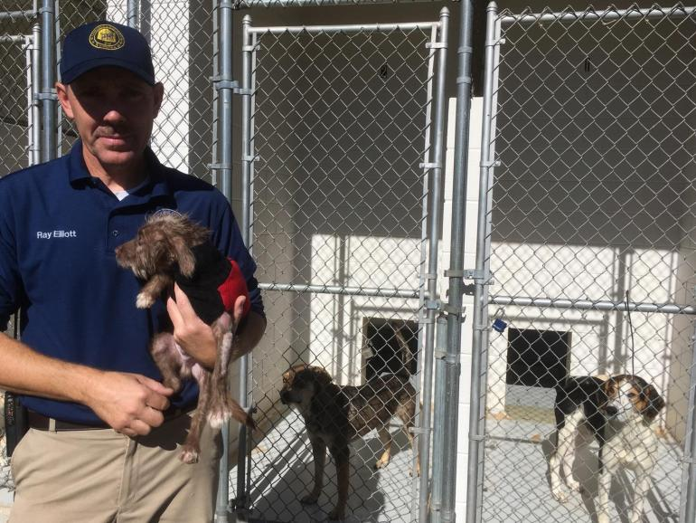 Animal Control Officer Skips Thanksgiving, Spends Time in a Kennel to Help Families Afford Spay/Neuter