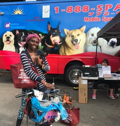 Pets On L.A.'s Skid Row Get Free S/N, Health Exams Through Exciting New Program