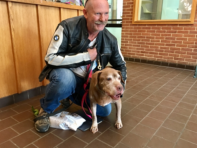 Perfect Time For The Perfect Dog – Man Adopts 18-Year-Old Dog From Shelter