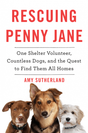 'Rescuing Penny Jane: One Shelter Volunteer, Countless Dogs, and the Quest to Find Them All Homes'
