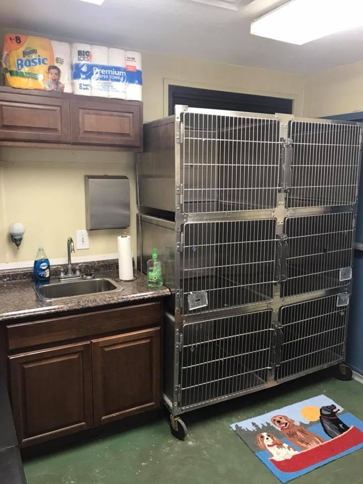 Faced With Serious Overcrowding, Shelter Staff Gave Up Break Room For Pets