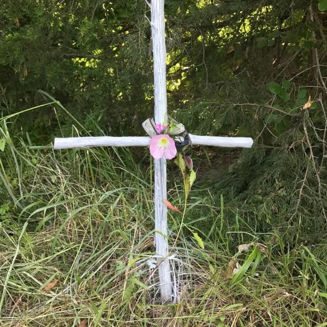 Visited my beloved pups grave today Sending love light andhellip