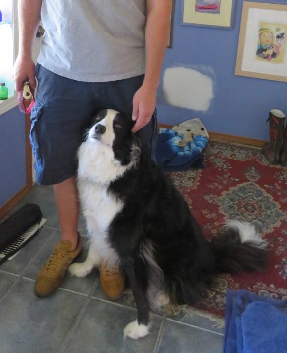 Kath's Canon July 18, 2015 Max Dog Walker Steve 011-cropped