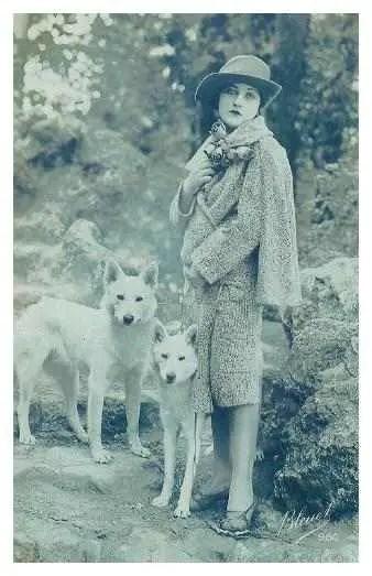 Ann Tracy White German Shepherds