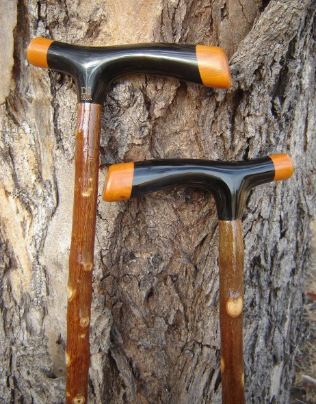A Pr of Matching Walking sticks DS w150 A and 150B of Black Buffalo horn handles with end caps of Qld Orange Current Bush, Both sicks are of Olive, sold