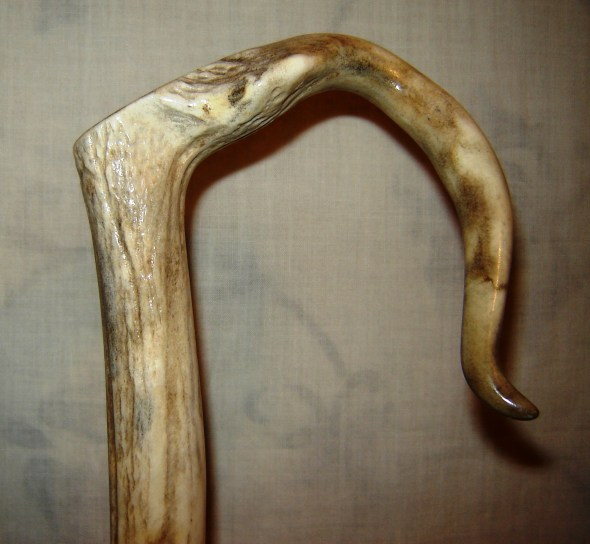 DS c 254 Deformed Red deer antler