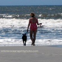 I Go Down to the Beach....