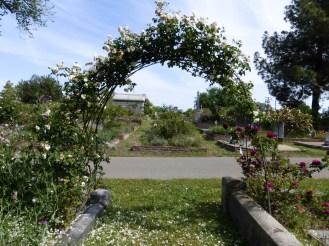 Easter in the Rose Garden 089