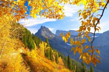 Fall season in Glacier Park Montana with mountain scene.