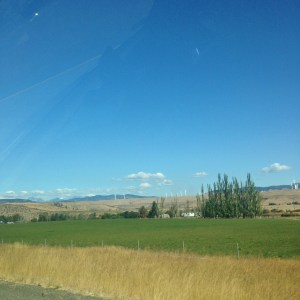 Fields of central Washington with mountains in the distance.