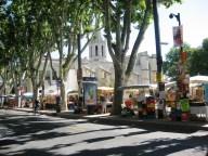 Avignon --book stalls on Rue de la Republic
