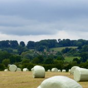 Hay bales ready to roll